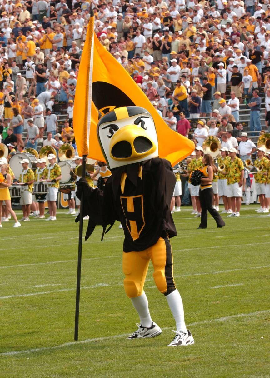 University Of Iowa Hawkeyes Football Mascot Herky The Hawk Iowa Hawkeye Football Iowa Hawkeye Iowa Hawkeye Basketball
