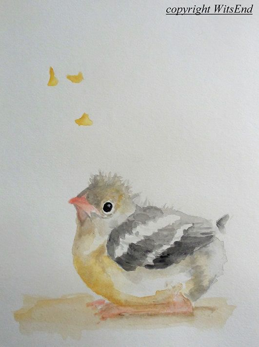 Goldfinch Watercolor Painting Baby Bird Nursery Art Spring Bird