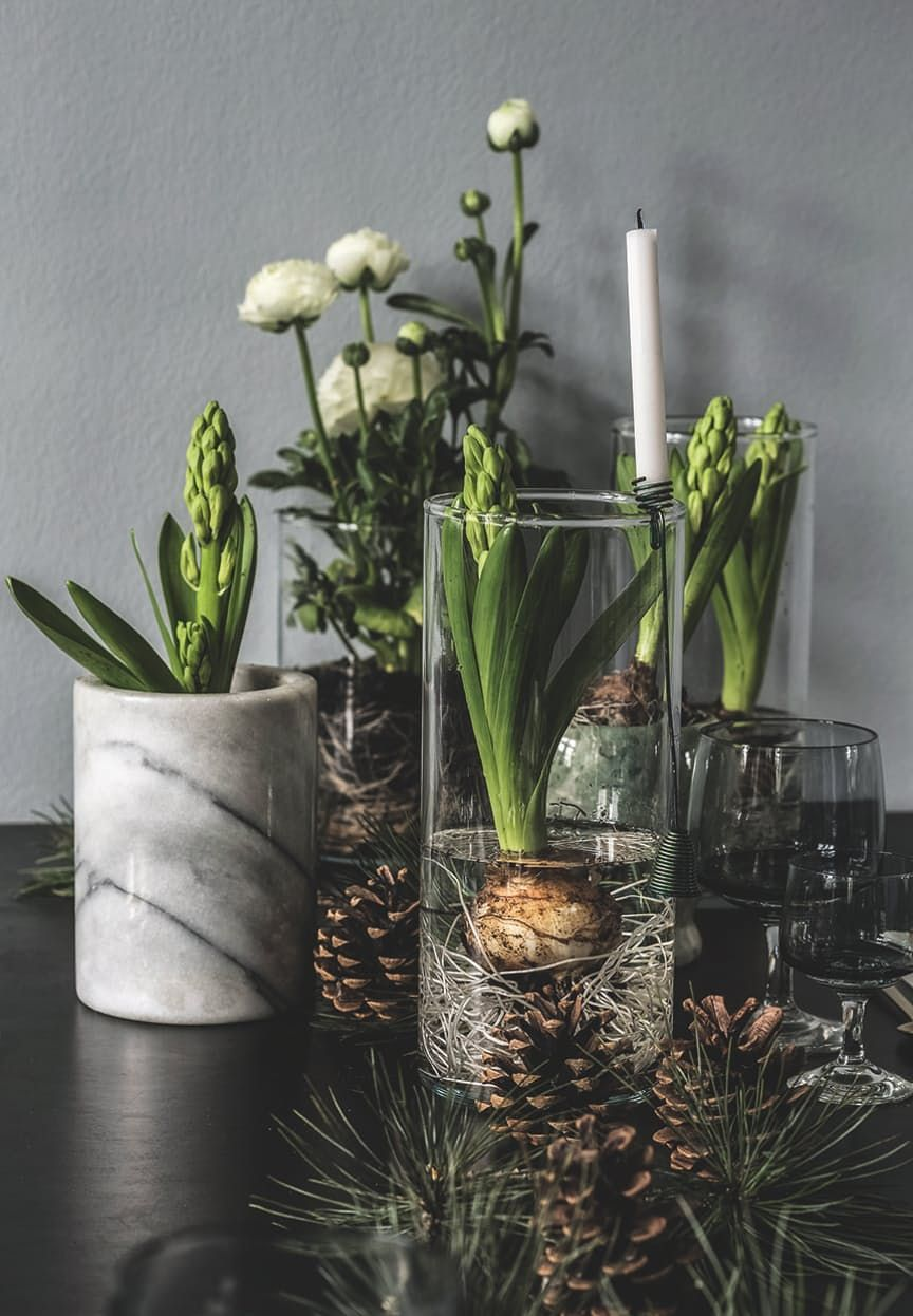 Create a lovely atmosphere with flowers and hyacinths style them create a lovely atmosphere with flowers and hyacinths style them in glass vases so the reviewsmspy