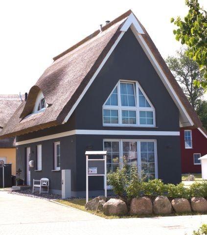 Ferienhaus auf Rügen direkt am Wasser, Sauna, Kamin, 3D