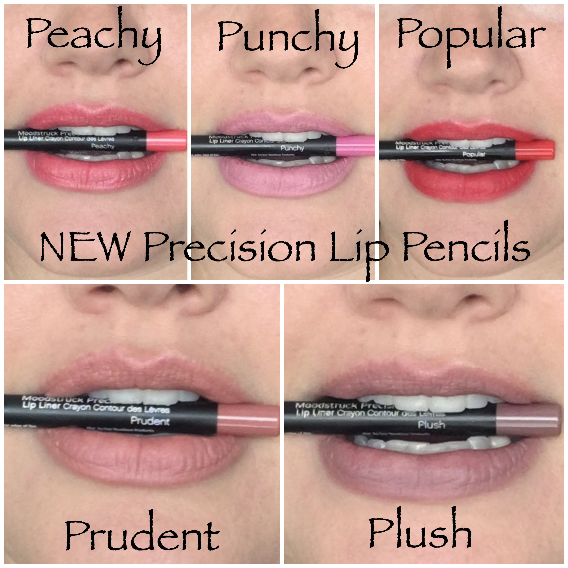 Brand new Younique Precision Lip Pencils! Released fall 2016. What's your favorite? #falllaunch #lipliner www.mzdivanailznlashes.com