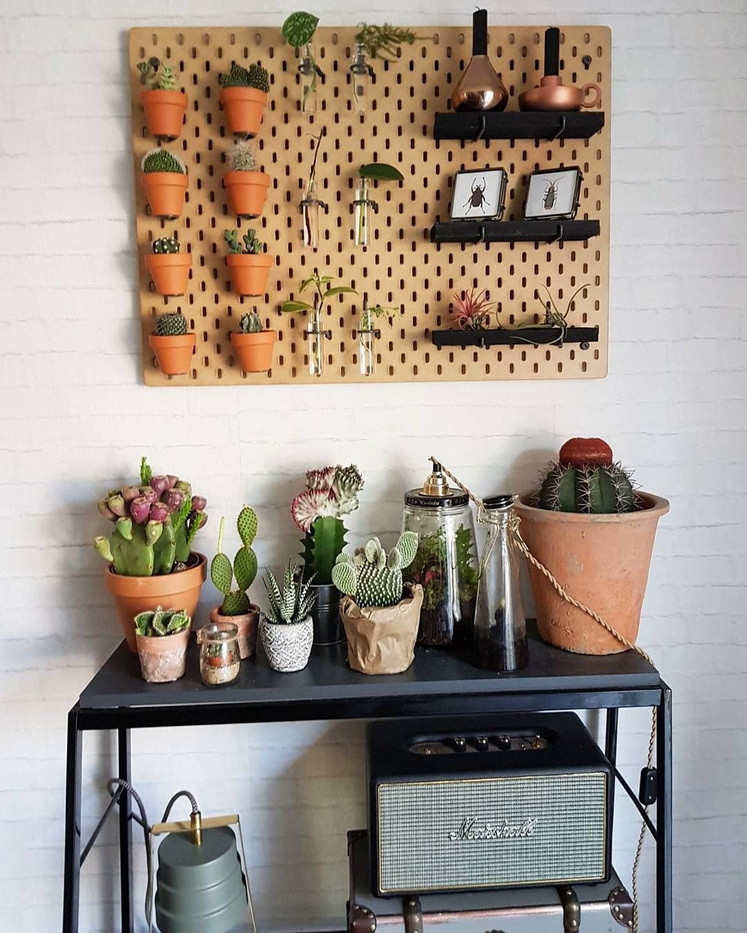 Het SKÅDIS ophangbord bij @kirstengelderen | #IKEABijMijThuis IKEA  IKEAnederland decoratie accessoires accessoire planten plant