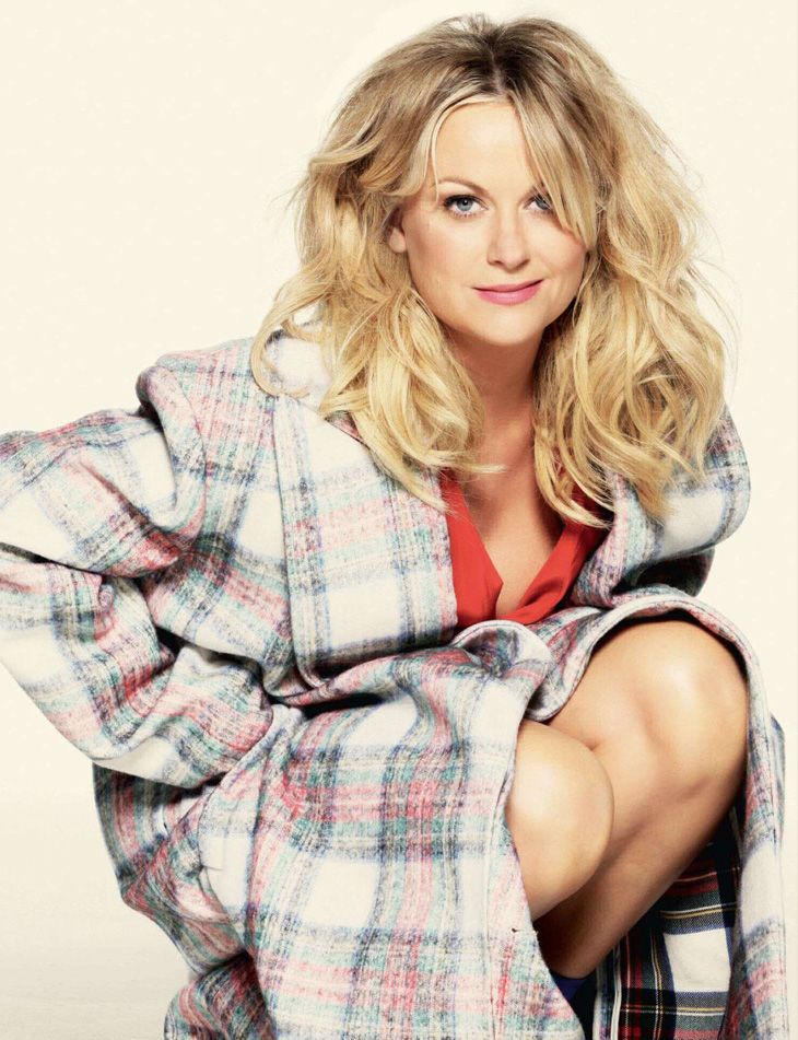 amy poehler yes please vk