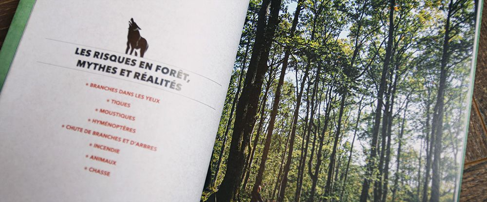 Manuel De Sur Vie En Milieu Forestier Par David Manise Et Guillaume Mussard Survie En Foret Survie Foret