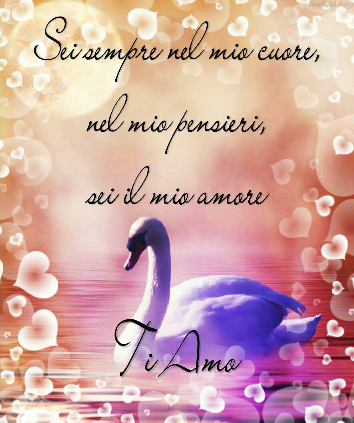 Ti Amo Roma Ti Amo Immagini Amo Immagini Roma Ti Ti Amo Amore