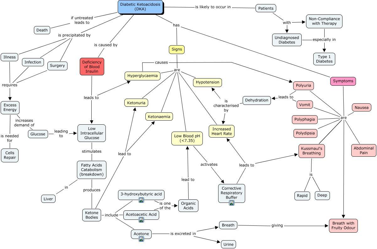 Diabetic Ketoacidosis concept map Concept map nursing