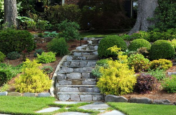 My Landscape Efforts On A Rocky Wooded Hillside Outdoor Landscaping Ideas Front Yard Landscaping On A Hill Sloped Garden