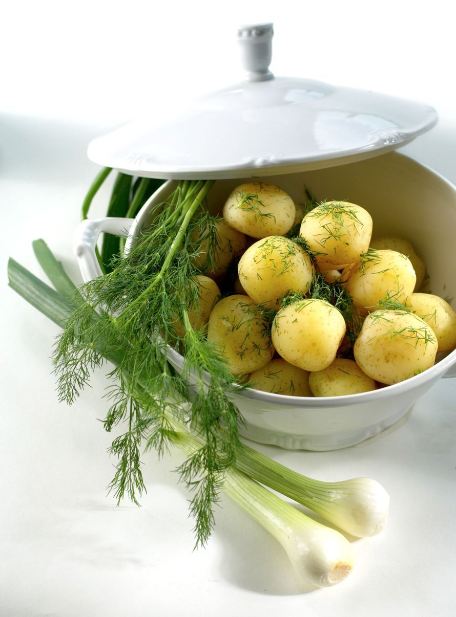 Uudet perunat juhannukseksi - näin perustat perunamaan parvekkeelle | ET *** Ämpärit riviin ja potut multaan! Kun toimit rivakasti, pääset nauttimaan oman parvekkeen perunasadosta juhannuksena. Jos maltat odottaa satoa, valikoima laajenee. Miten olisi parsaperuna?