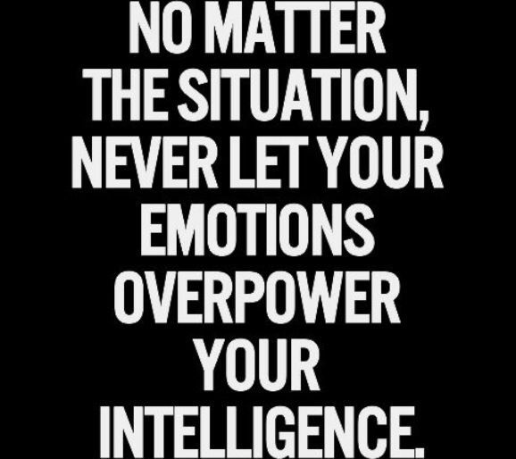 Logic Quotes Fair Best 25 Logic Quotes  Intj Life Inspiration And Wisdom