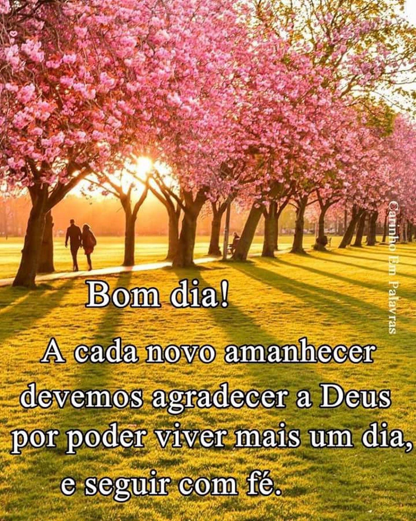 Bom Dia Amigos Luiz Carlos Google Frases Motivadoras