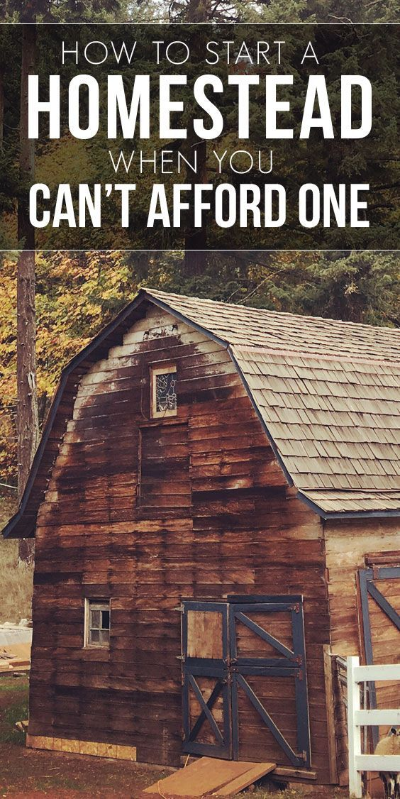 How to Start a Homestead When You Can't Afford One ...