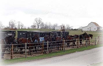 Amish Buggy Parking Lot Outside Of The Village Of