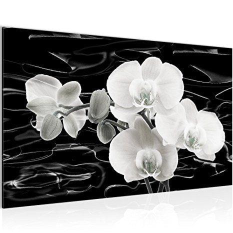 Bilder Blumen Orchidee Wandbild Vlies - Bilder Blumen bilder
