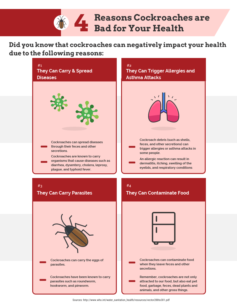 4 Reasons Cockroaches Are Bad For Your Health Infographic