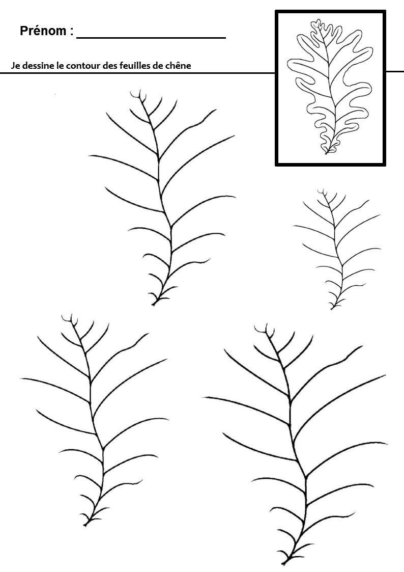 Graphisme en maternelle : tracer des lignes qui ondulent ...
