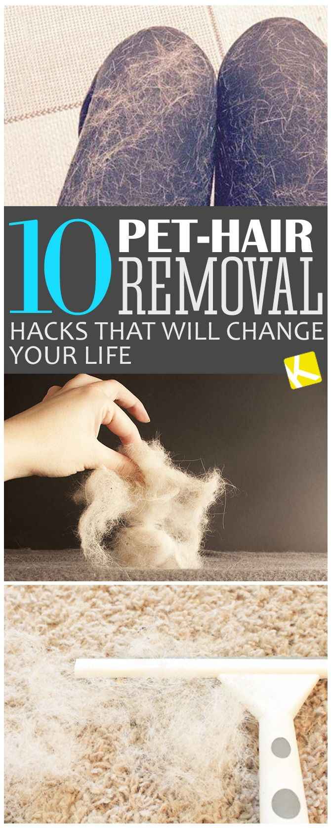 10 Pet Hair Removal Hacks That Will Change Your Life Via The Krazy Coupon Lady Pet Hair Removal Pet Hair House Cleaning Tips