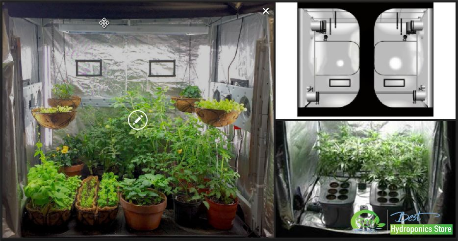 Looking for hydroponic indoor gardening or greenhouse supplies? Shop online at Zenhydro.com for & Looking for hydroponic indoor gardening or greenhouse supplies ...