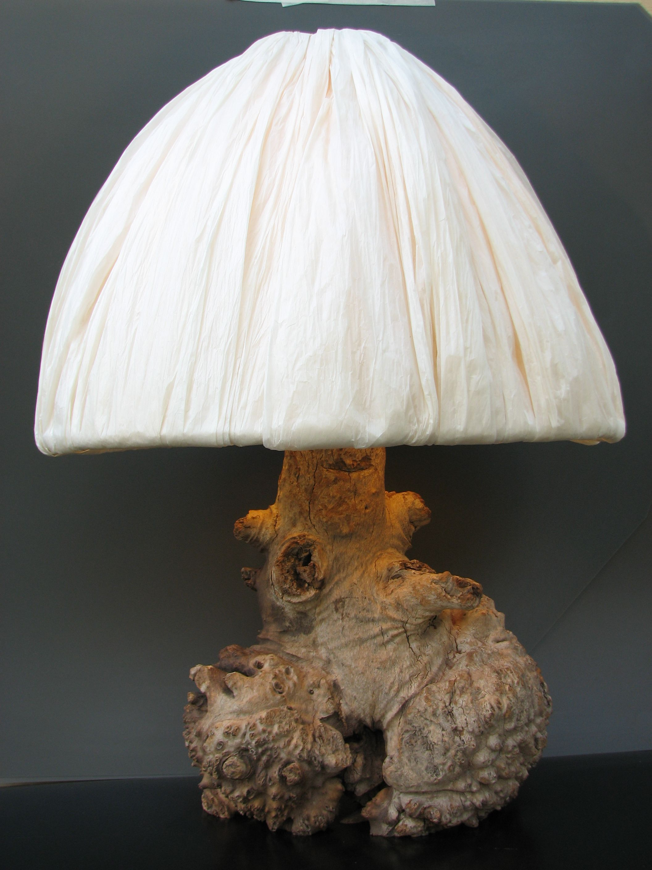 Japanische Lampenschirme Burl Lamp And Japanese Paper Shade Log Lamps Pinterest