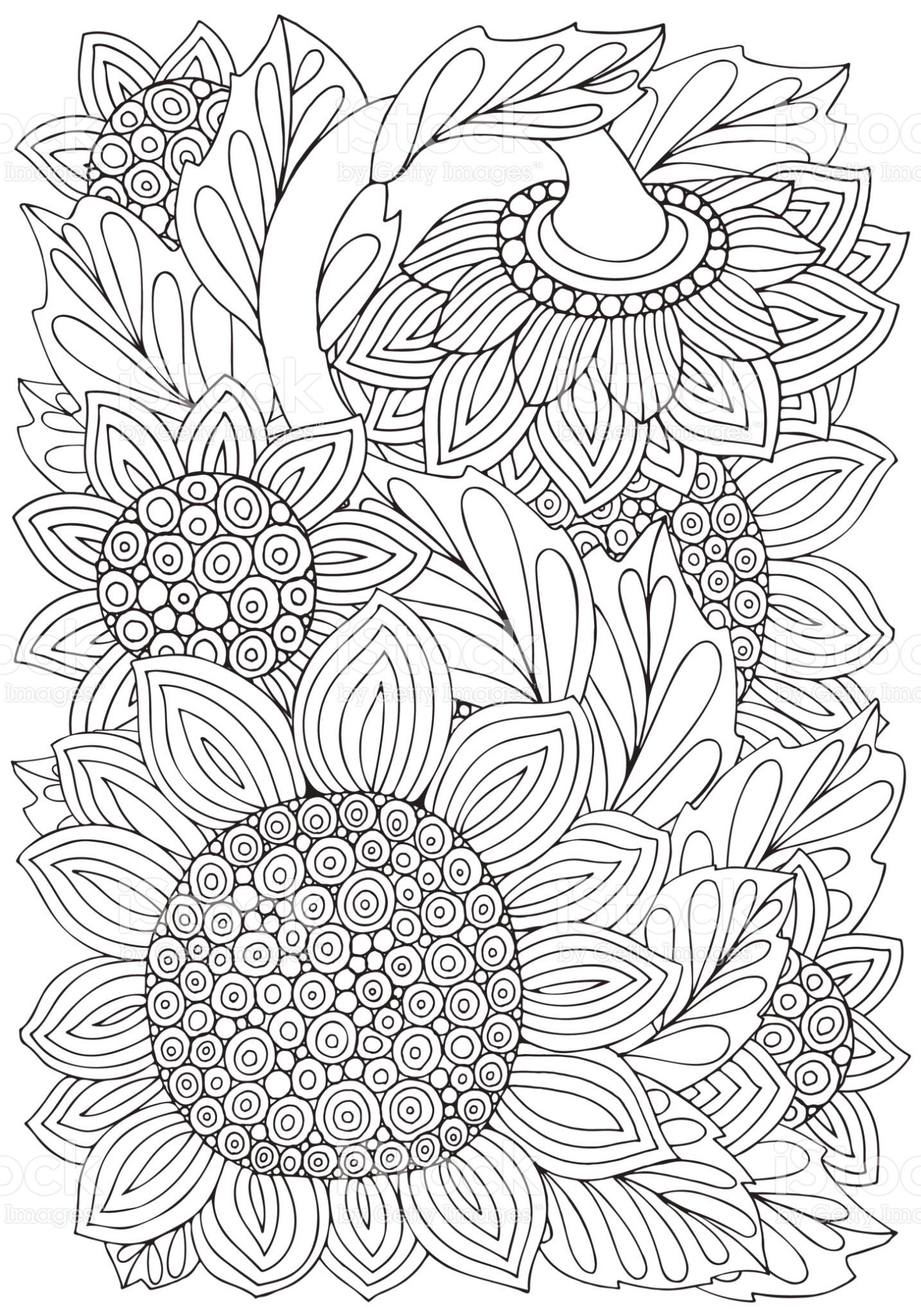 Coloring Book Page With Sunflowers And Leaf In Doodle Style Black