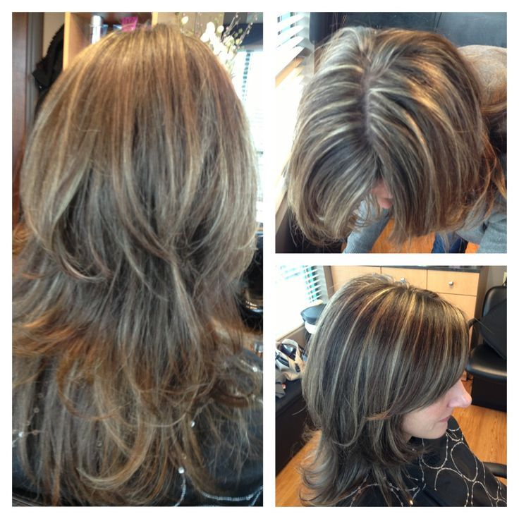 Gray Highlights In Brown Hair Light Brown Hair With Highlights