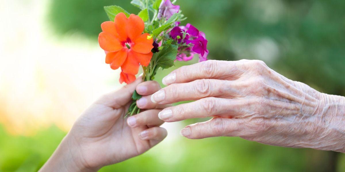 Ein Blumensträußchen, das schließlich verwelken wird