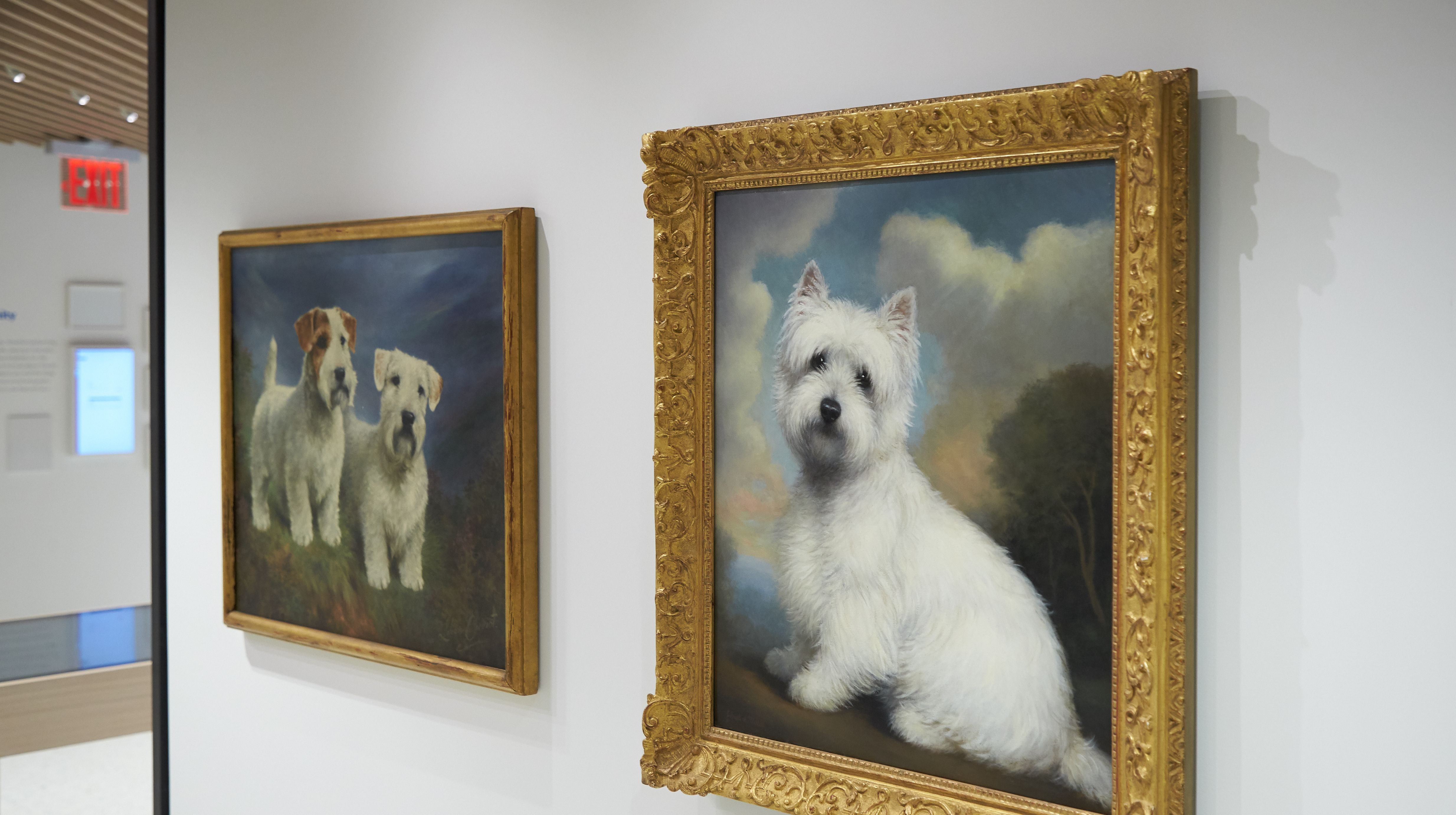 The Museum of the Dog is set to debut in New York City on
