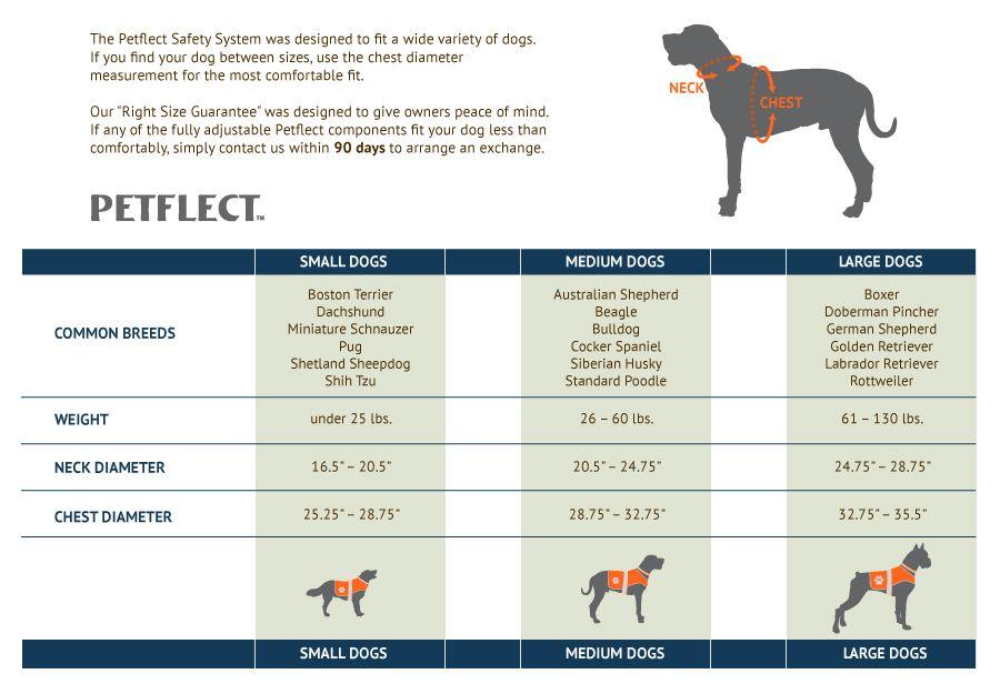 Boxer Size Chart Dog Bing Images