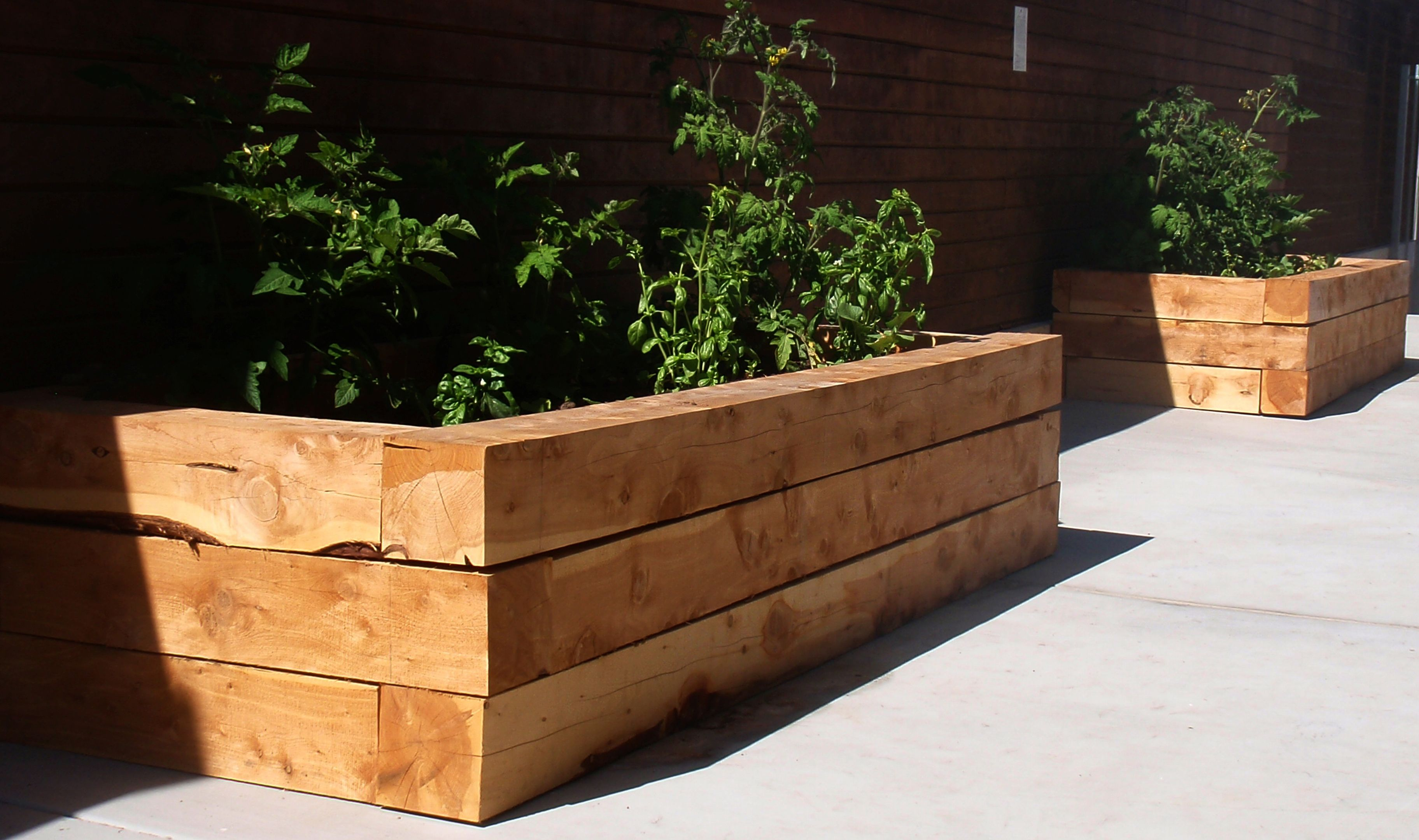 Top 2 Designs For Easy To Build Juniper Raised Beds Diy Planters Outdoor Wooden Planter Boxes Diy Diy Outdoor Planter Boxes
