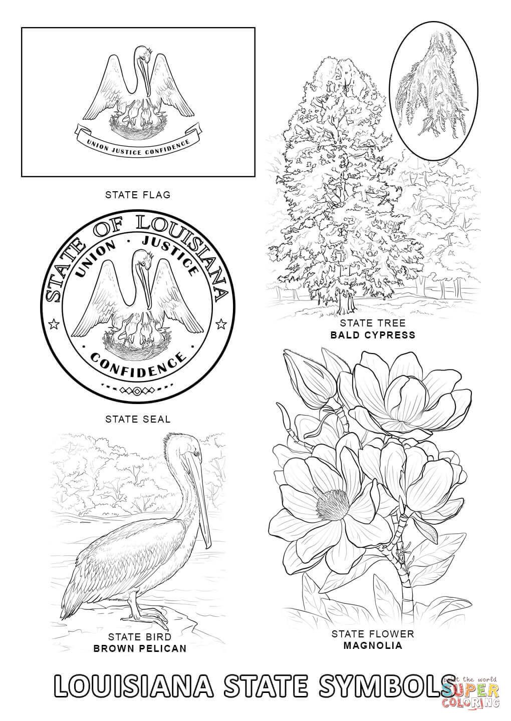 Download Or Print This Amazing Coloring Page Louisiana State