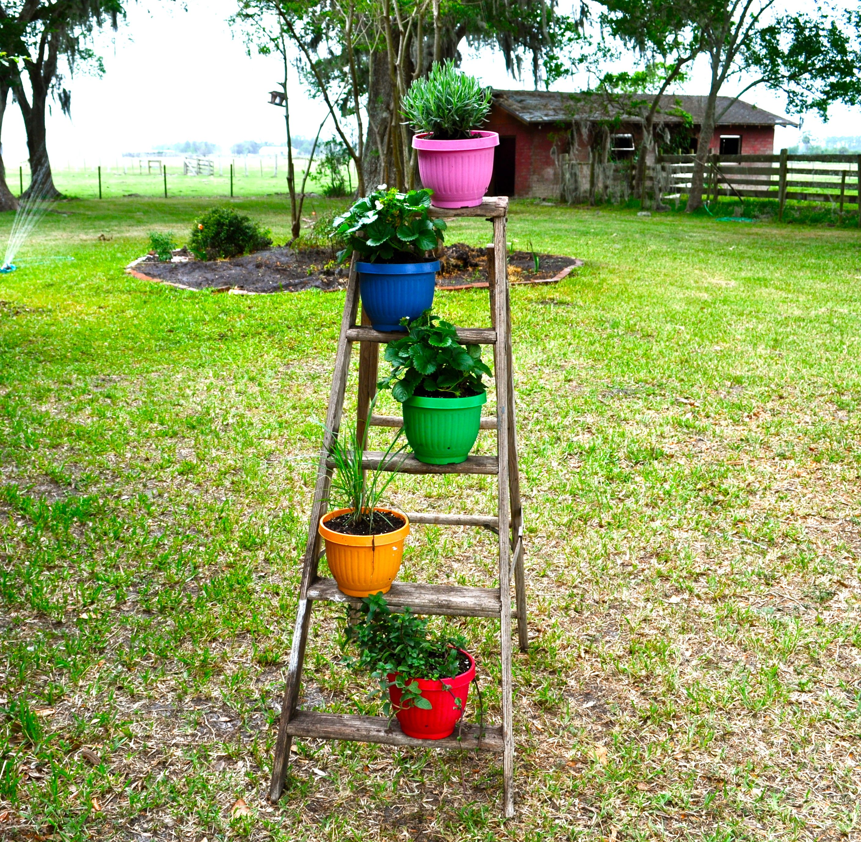 Super Simple Ideas For People Who Hate Yard Work: Ladder Planter...Super Easy & CHEAP To Make!