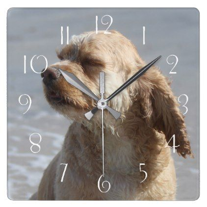 American cocker spaniel square wall clock - clock templates