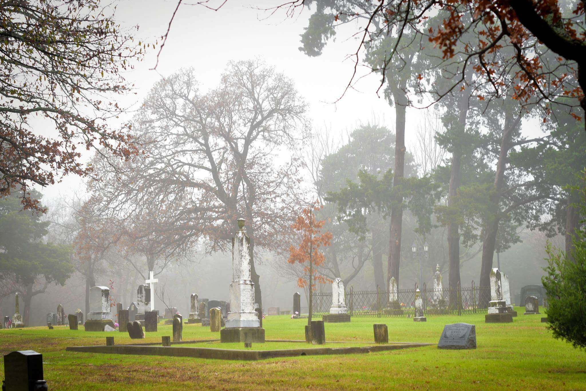 Cemetery Creepy Fog Foggy Wallpaper And Background