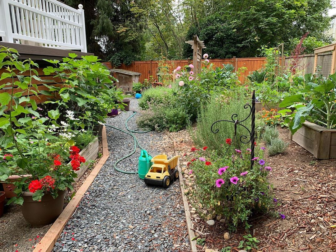 Good Morning Friends Hope To See You On The Live Chat During My Garden Tour Premiere On Youtube It S At 12 Noon Pacific Time Link In My Stories And Bio Than Backyard garden tour youtube