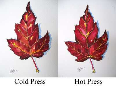 Difference Between Cold Press And Hot Press Art Basics Floral