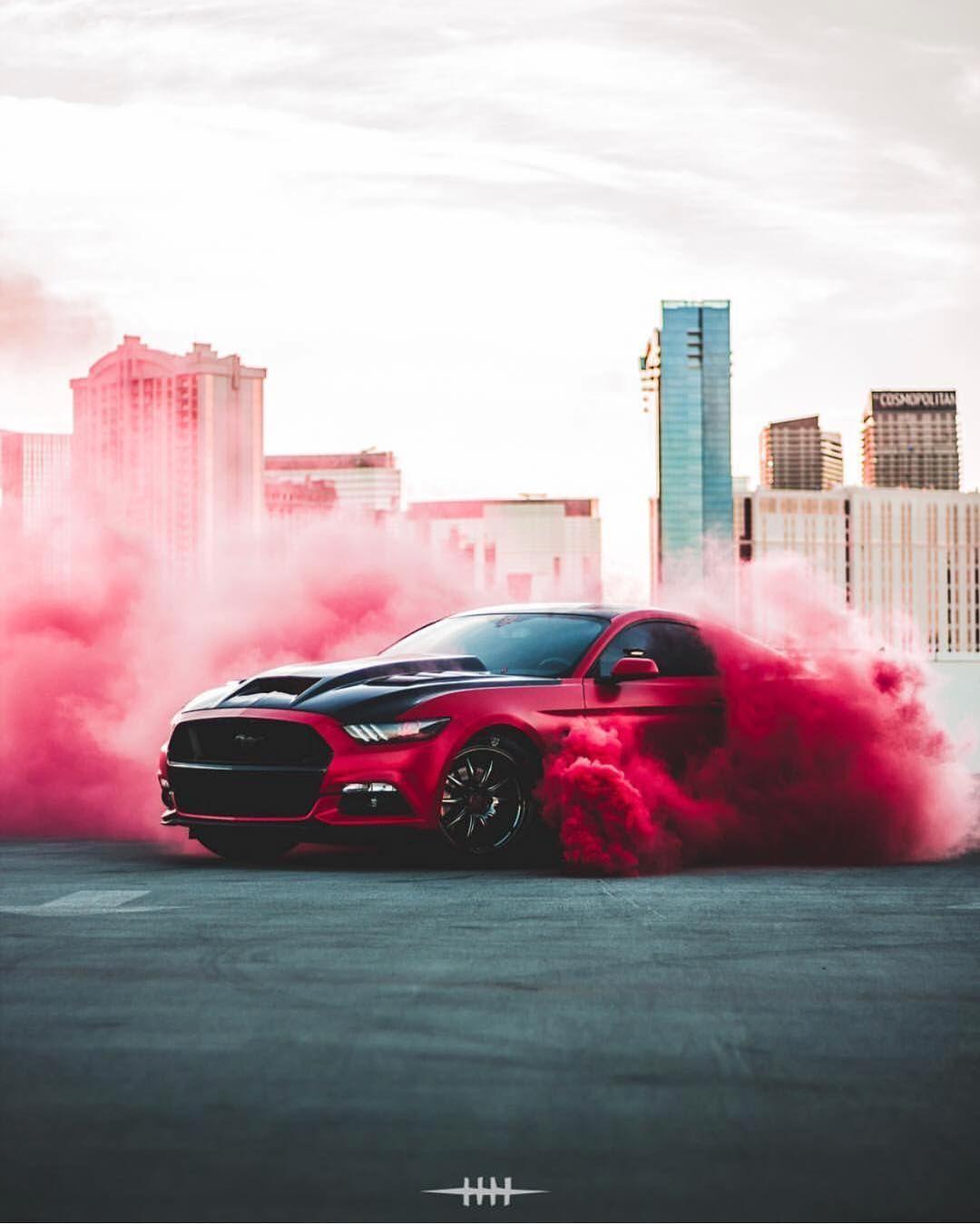 живых фото машины в дыму подопечные называют исключительно