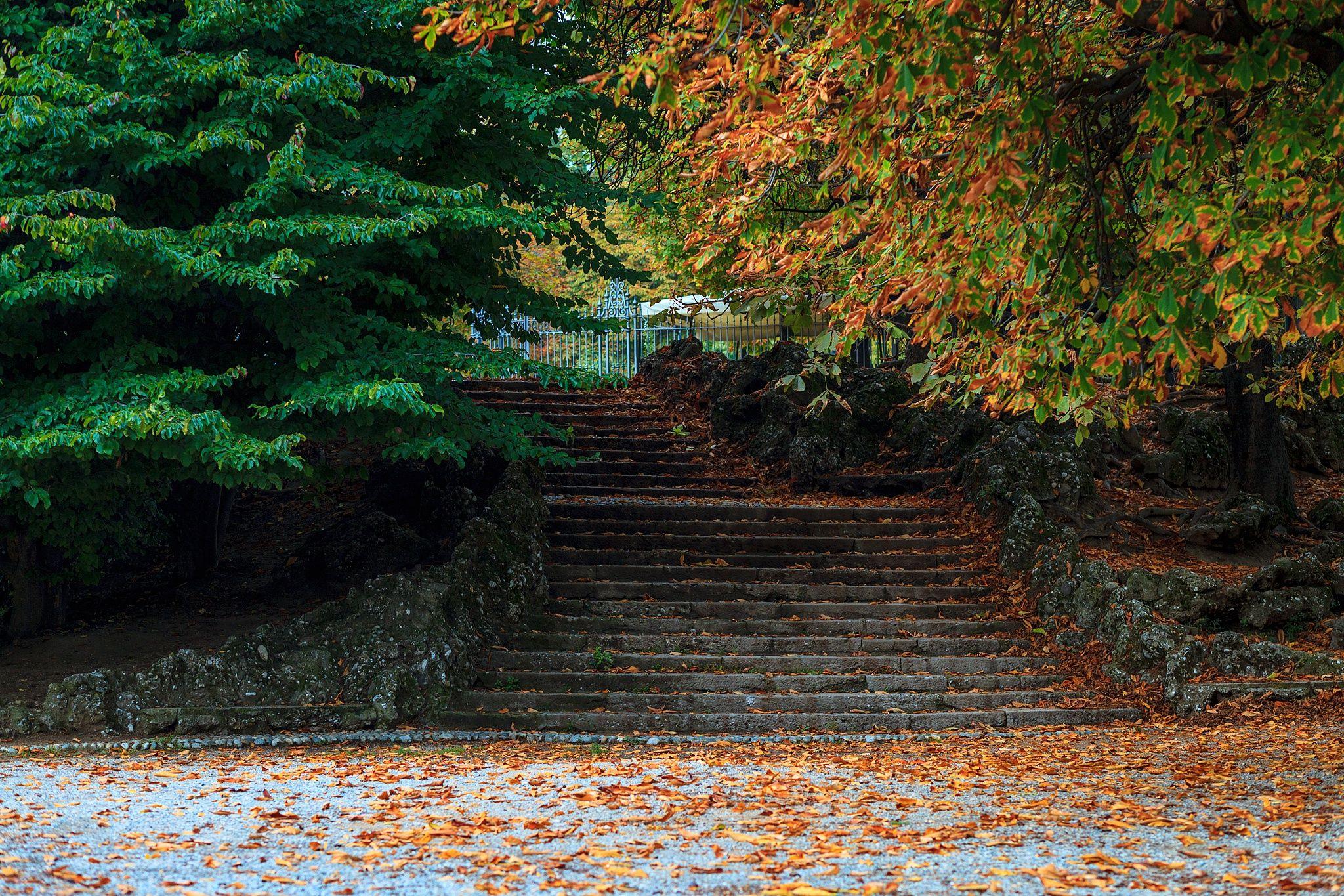Giardini pubblici Indro Montanelli by Gaetano Cessati on