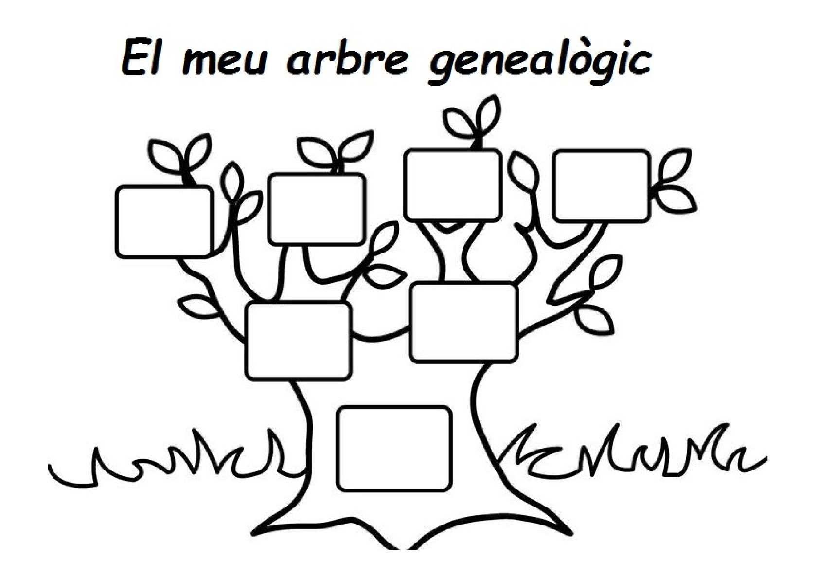 Resultat d\'imatges de arbre genealogic   arbre genealogic   Pinterest