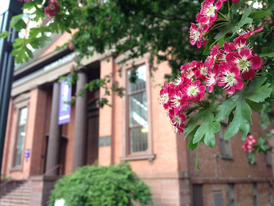 Tiny blossoms greet students and area business people from