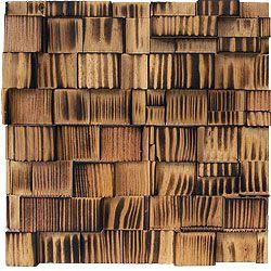 Asi Fusion Wood Panels