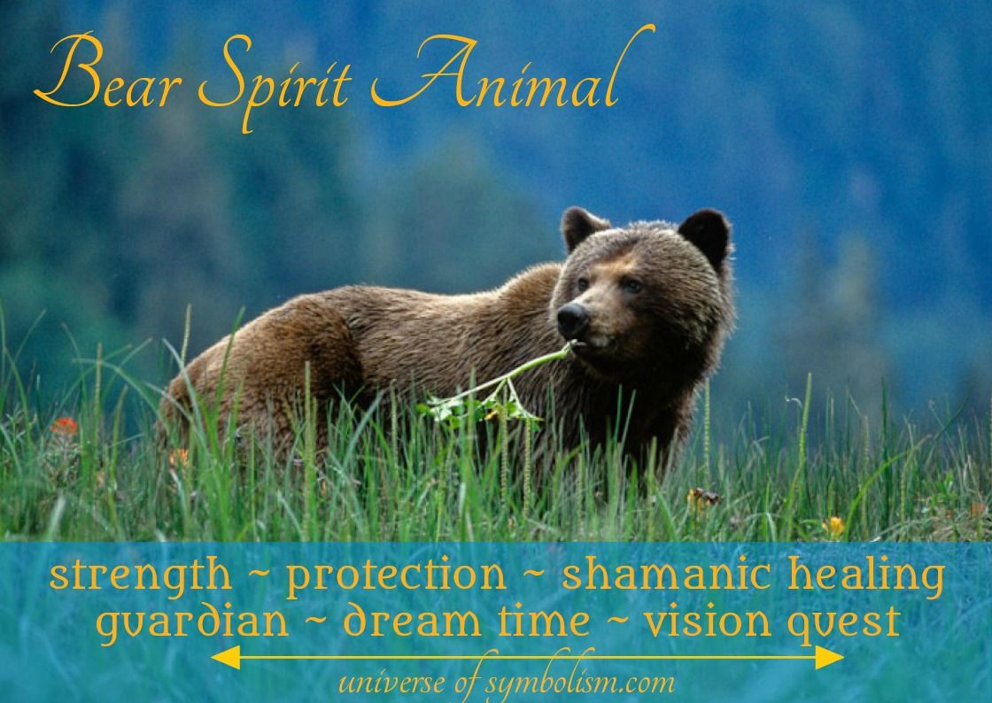 Bear Spirit Totem Power Animal Symbolism Meanings Of The Bear Holding The Powers Of Strength Protection And Hea Bear Spirit Animal Power Animal Animal Quiz
