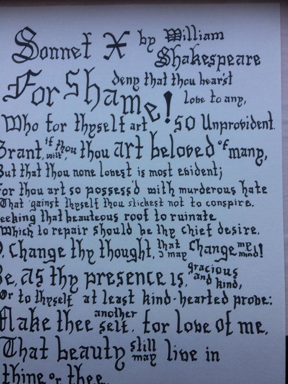 sonnet x