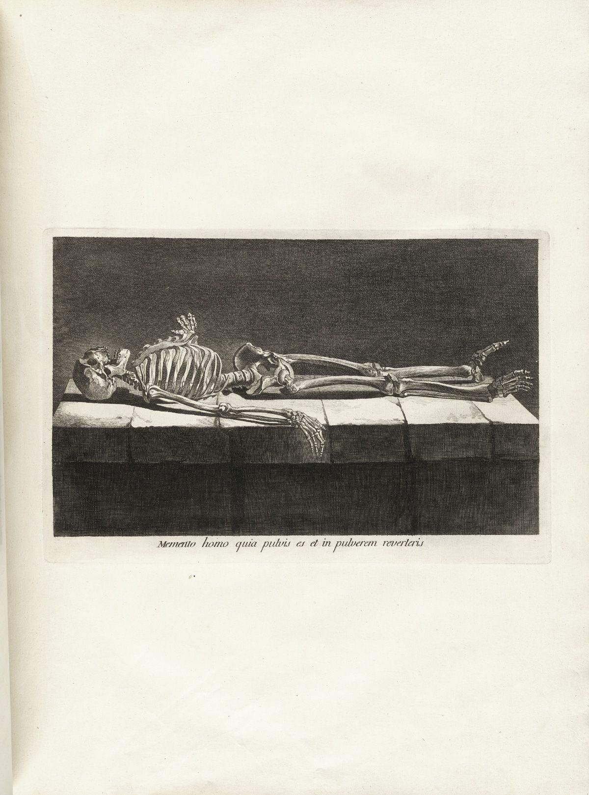 engraving of a skeleton lying down on a slab of marble as if in a, Skeleton