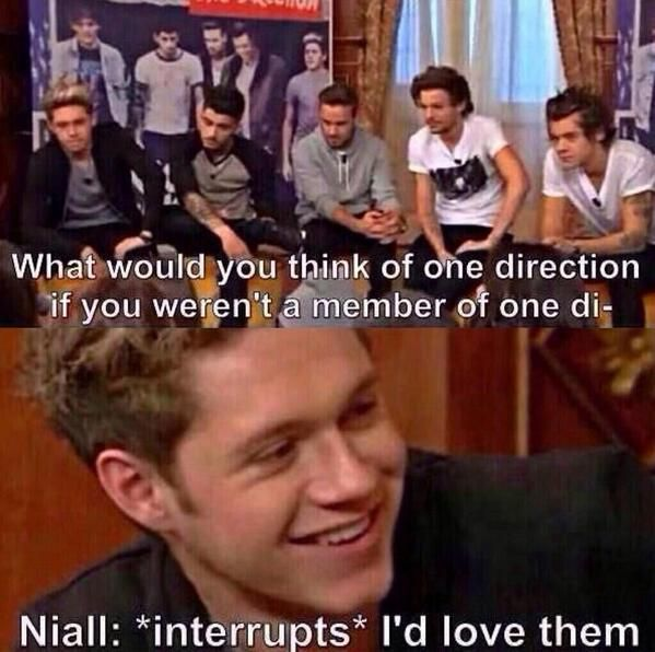 Niall Horan or one direction fangirl the world may never know