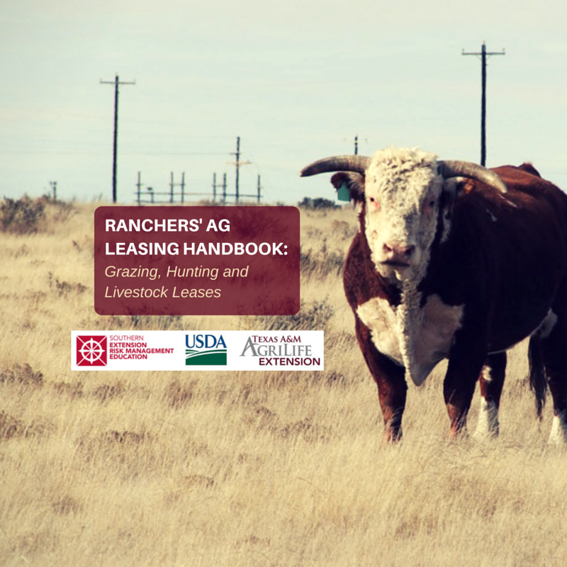 Pasture Lease Agreement Hunting Lease Agreement Livestock