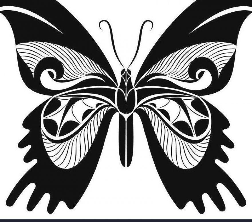 Birds  #monarch  #butterfly  #tattoo  #designs monarch butterfly tattoo designs  how to paint a monarch butterfly  monarch butterfly costume women  monarch butterfly garden  monarch butterfly wallpaper aesthetic  monarch butterfly drawing  monarch butterfly aesthetic  monarch butterfly template  monarch butterfly tattoo on shoulder  monarch butterfly tattoo ankle  monarch butterfly painting easy  monarch butterfly earrings  monarch butterfly makeup eye  monarch butterfly wallpaper iphone  monarc