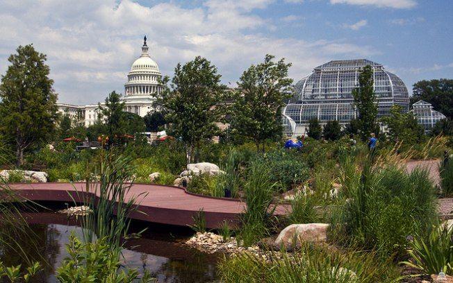 11 lugares em Washington para visitar de graça