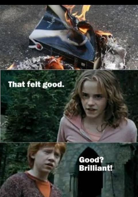 Hermione And Books Harry Potter Vs Twilight Harry Potter Memes Harry Potter Jokes