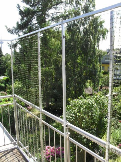 katzennetz schiebetuer katze pinterest katzennetz katzen und balkon katzensicher. Black Bedroom Furniture Sets. Home Design Ideas