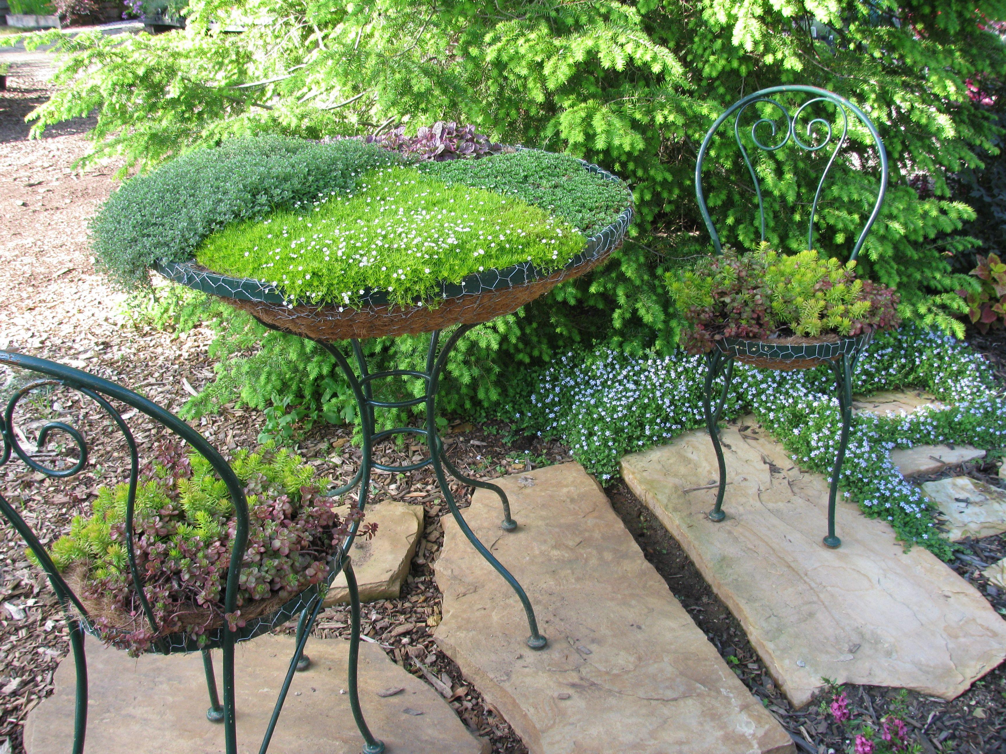 Full Bloom Nursery Dream Garden Front Yard Landscaping Plants