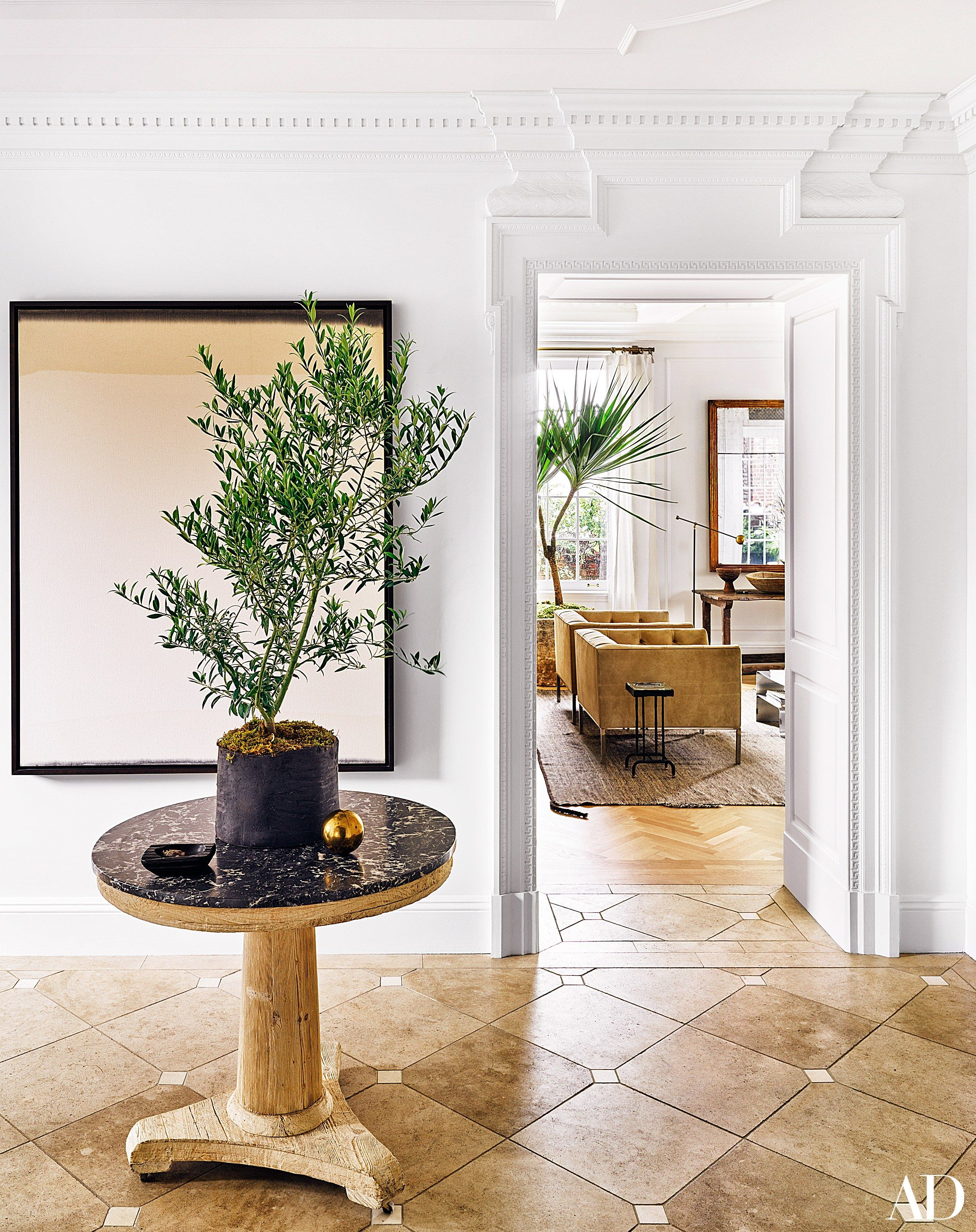 the best indoor house plants and how to buy them indoor house the best indoor house plants and how to buy them
